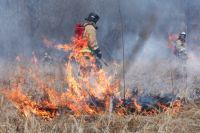 Из всех случаев 85 – это горение сухой травы и мусора.