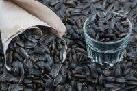 Вредна ли шелуха: ученые рассказали, как правильно есть семечки