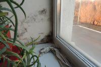 ОНФ проверит в Оренбурге дома для переселенцев.