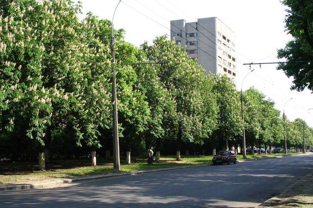 Горсовет Харькова рассмотрит вопрос о возвращении проспекту имени Жукова