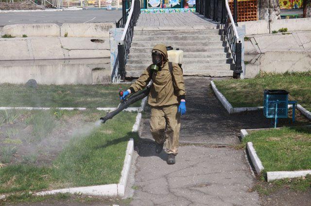 Сколько стоит обработка участка от клещей в Тюмени