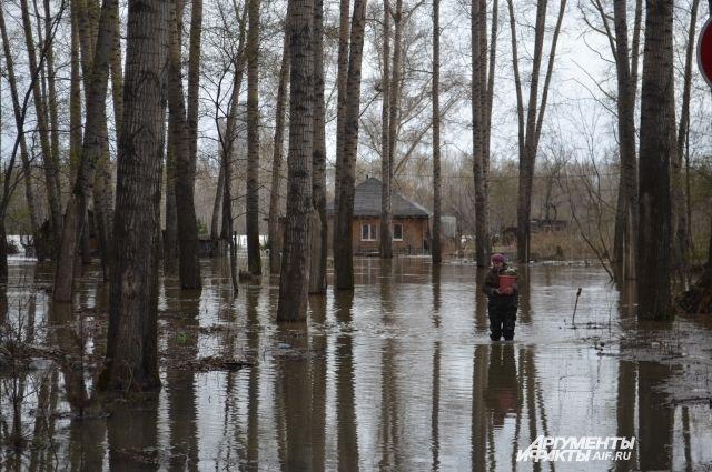 Паводок начался 11 мая из-за резкого потепления.