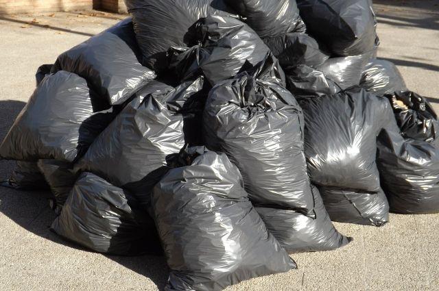 В Ноябрьске волонтеры собрали мусор возле родника