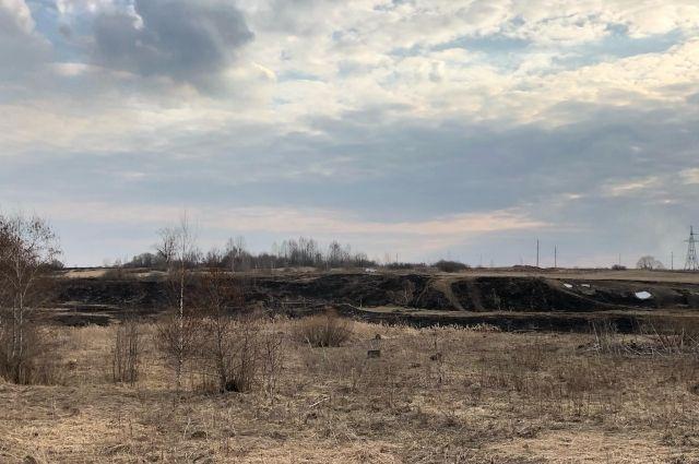До 15 мая в Калининградской области действует особый противопожарный режим