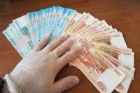 В Новосибирской области продолжается декларационная кампания.