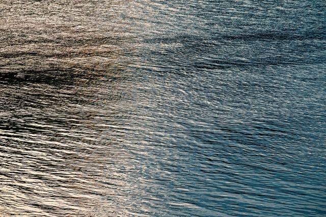 Сотрудники ТОСЭР нашли в озере Песьяное утонувшего