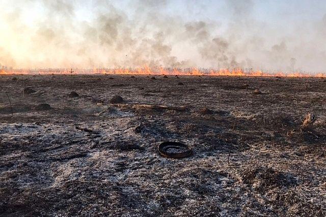 В огне горит: ситуация с природными пожарами в Тюменской области.