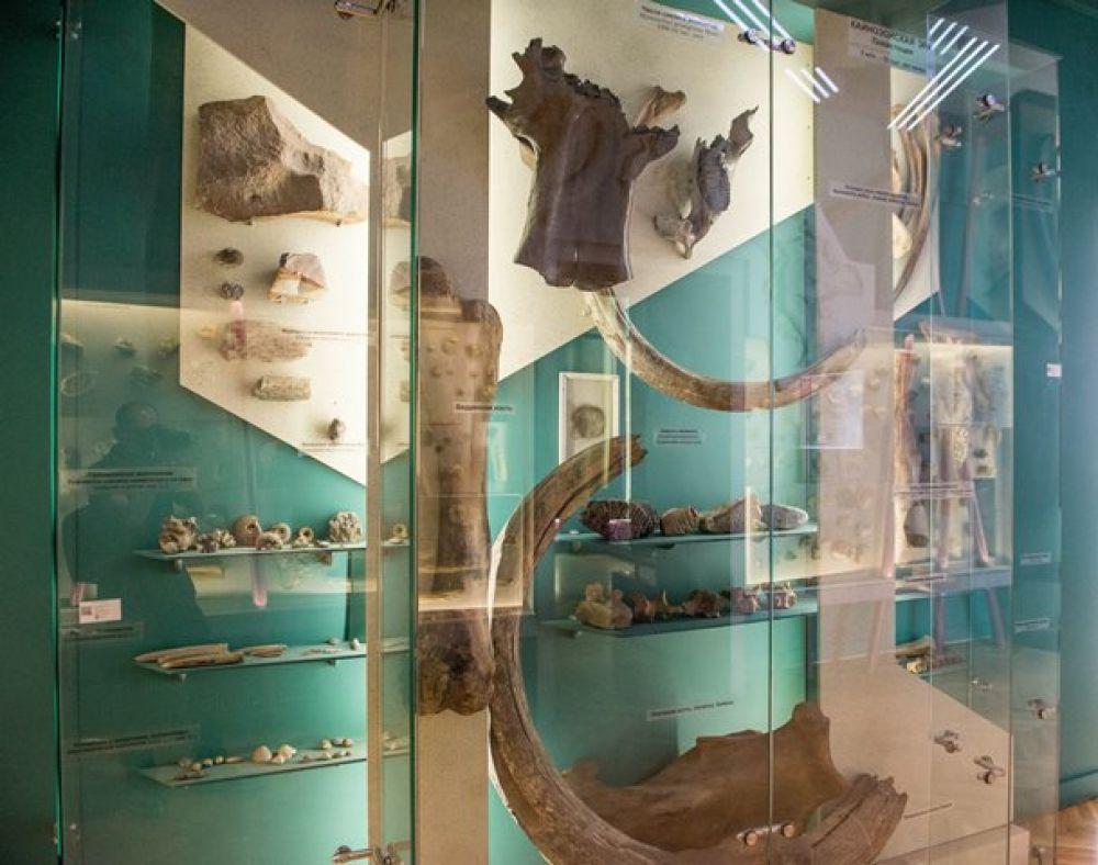 1885 год - открытие Тульского Епархиального древлехранилища (позднее Палаты древностей) – первого публичного музейного учреждения Тульского края, послужившего основой Тульского художественно-исторического, а впоследствии областного краевед-ческого музея