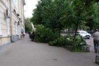 В центре Киева автомобиль вылетел на тротуар и сбил пешеходов