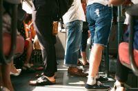 Только дети из многодетных семьей (учащиеся общеобразовательных учреждений) имеют право проезда в автобусах по социальным проездным билетам.
