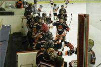Сегодня в Пермском крае хоккеем занимаются около шести тысяч человек.