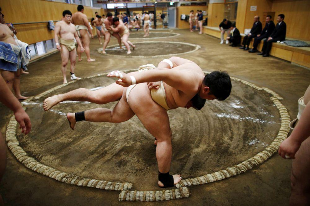 Студенты тренируются в борьбе сумо в Университете спортивной науки Nippon в Токио, Япония.