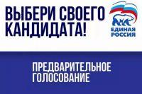 В Ялуторовске и Калининском АО Тюмени пройдет предварительное голосование: