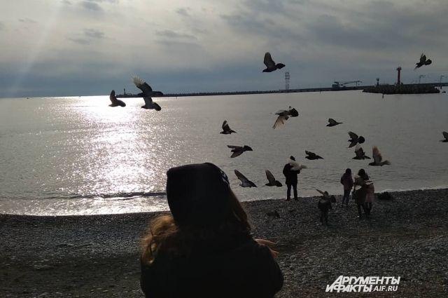 В сквере Комсомольском на зарядке разыграют путевку в Сочи