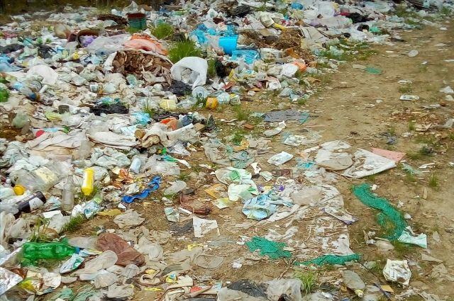 «Не знаем что с этим делать, лес весь забросали мусором», - возмущается одна из местных жительниц.