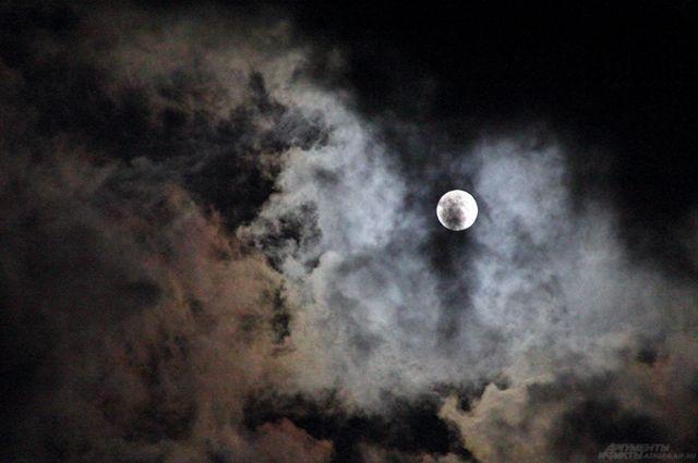 Чтобы увидеть цепочку спутников Илона Маска нужна ясная погода и немного терпения. Траектория их движения пролегает над территорией всего Земного шара, в том числе и России.