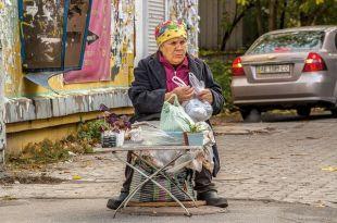 Бабушкам, чтобы торговать продуктами с огорода, касса не нужна.