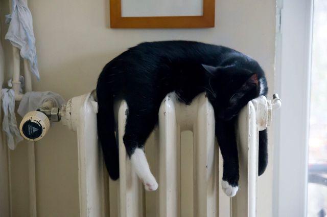С 29 мая в Сыктывкаре отключили тепло в домах.