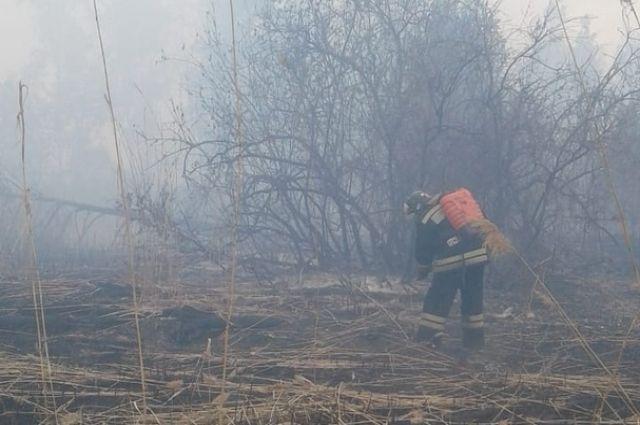 На тушение пожара на площади 13 гектаров ушло больше четырех часов.