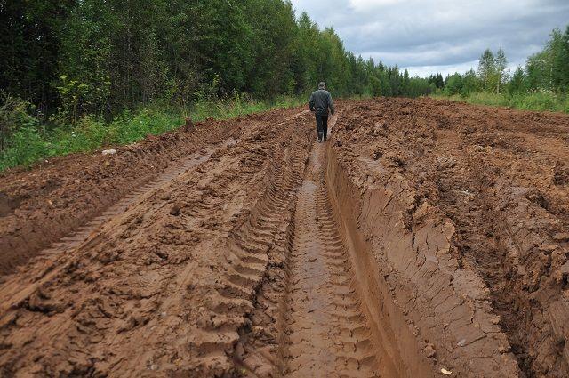 Вот так выглядит дорога до посёлка Тукачёво. Несмотря на то, что фото было сделано в 2017 году, ситуация с тех пор не изменилась.