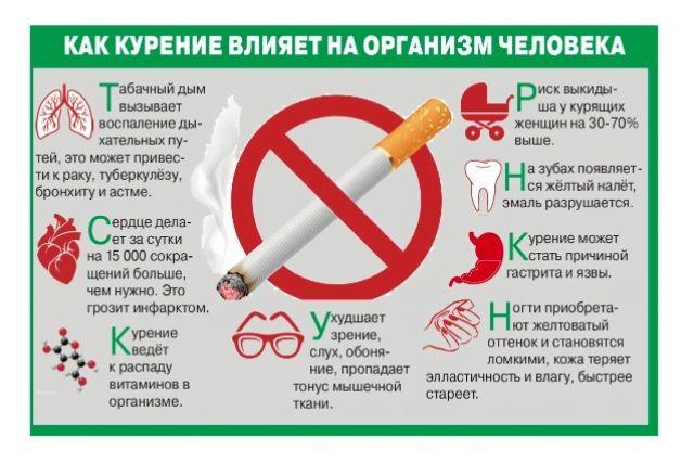 Табачные изделия и их влияние на организм человека слушать онлайн 2 тысячи баксов за сигарету