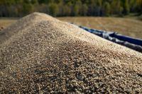 Президент ставит задачу наращивать экспорт продукции агропромышленного комплекса, и регионы СФО в этом федеральном проекте тоже участвуют.