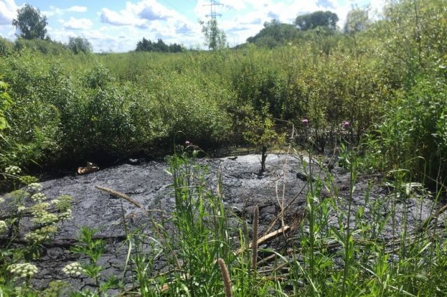 Собрать нефтепродукты из водоёма сложно, потому что загрязнение быстро распространяется на большую площадь.