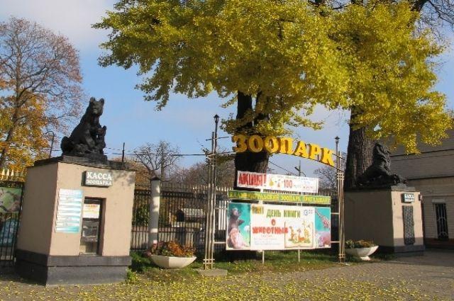 Входную группу Калининградского зоопарка отреставрируют