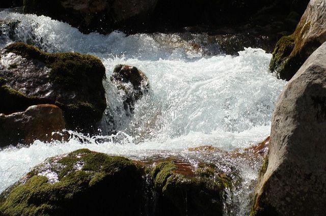 Извилистая река сильно разлилась, в изгибах было много веток, бревен, торчали коряги.