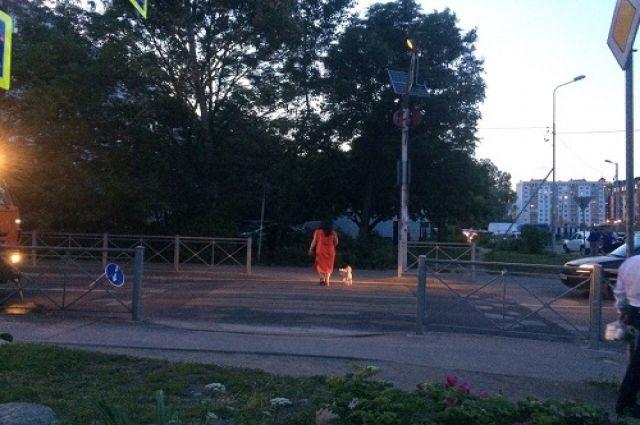В Калининграде на пешеходном переходе сбили подростка