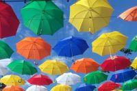 В закупке указано, что стоимость одного зонта составит 6 361 рублей.