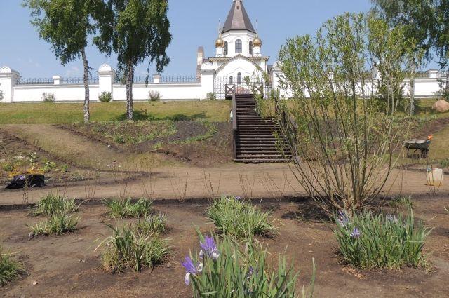 На набережной высадили сотни деревьев, кустарников и тысячи цветов.