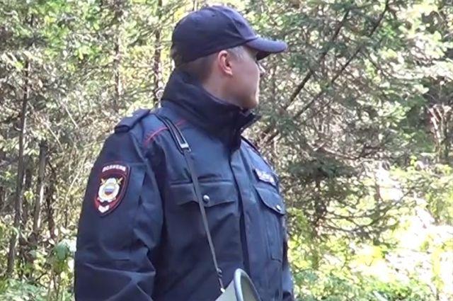 Полиция и добровольцы просят новосибирцев помочь в поиске Татьяны, быть внимательнее на улице и по возможности распространить объявление о пропаже по социальным сетям.
