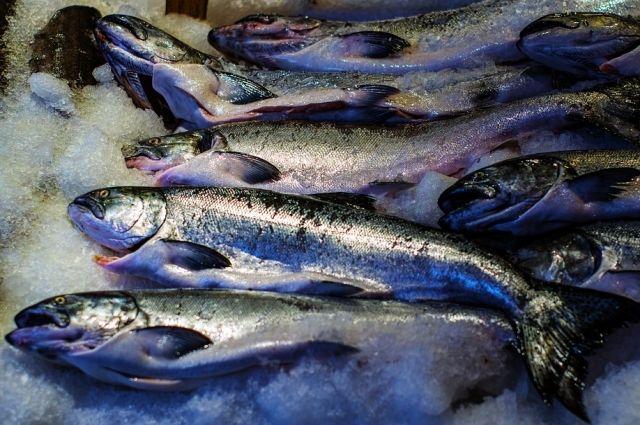 На прилавках тюменских магазинов встало больше местной рыбы