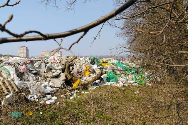 Рядом с останками животных расположились несколько громных мусорных куч: здесь и мебель, и упаковки от продуктов питания, и ковры, и подушки, и предметы одежды.
