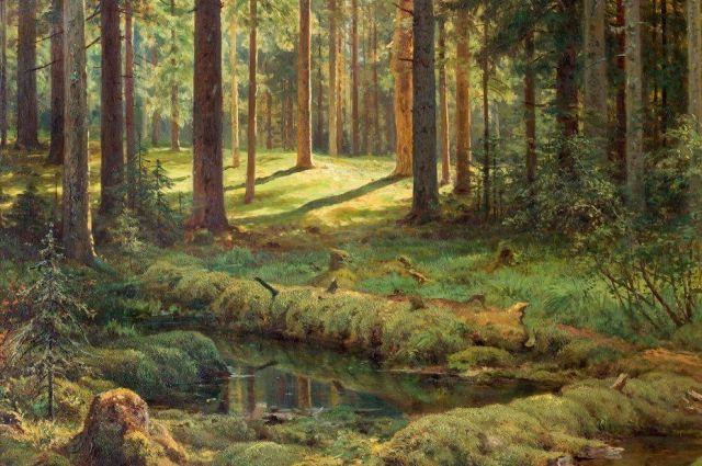 Иван Шишкин. Фрагмент картины «Хвойный лес. Солнечный день».