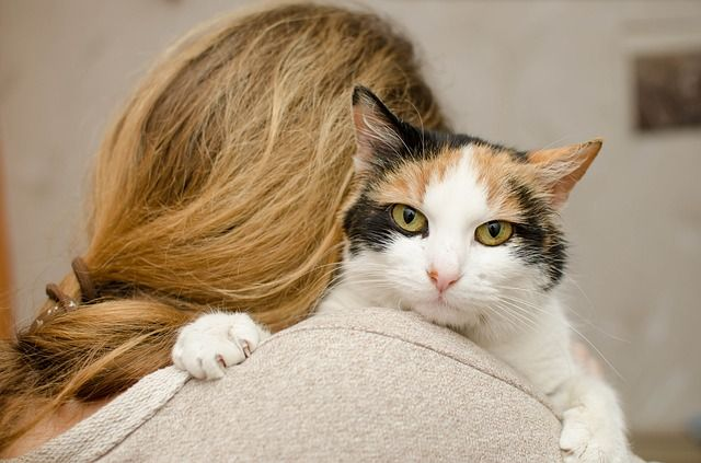 Сальмонеллёзу подвержены и люди, и животные.