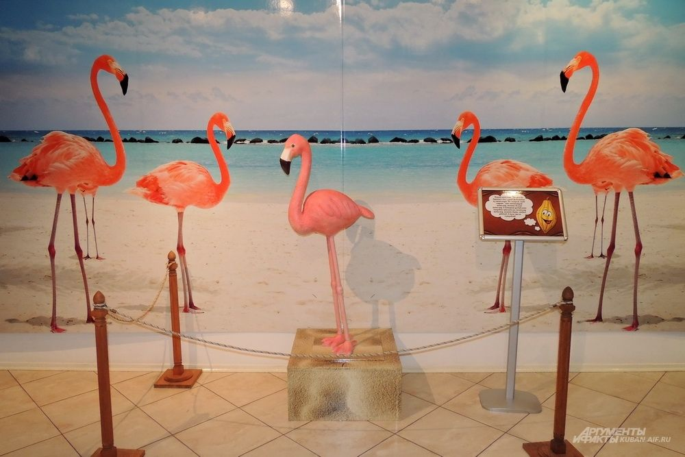 Шоколадный фламинго.