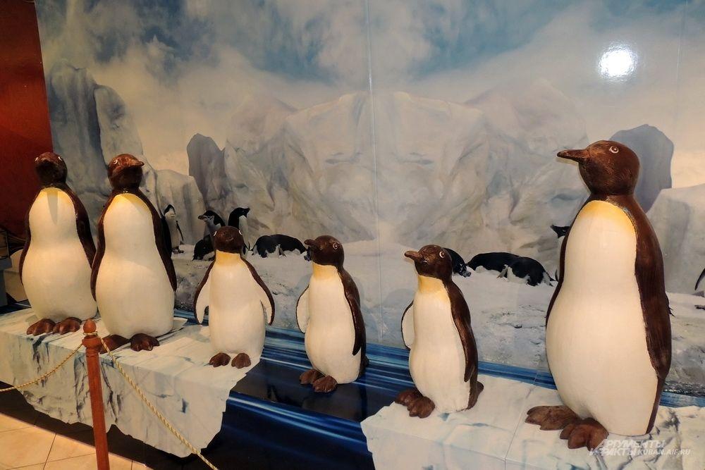 Шоколадные пингвины.