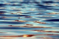 Специалисты просят родителей не отпускать детей купаться без сопровождения.