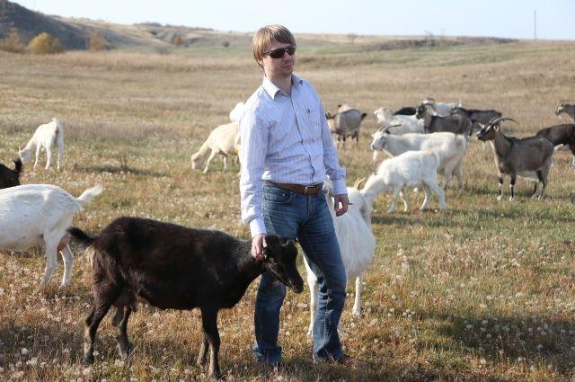 Ростовчанин Юрий Панченко начал свою деятельность с разведения коз.