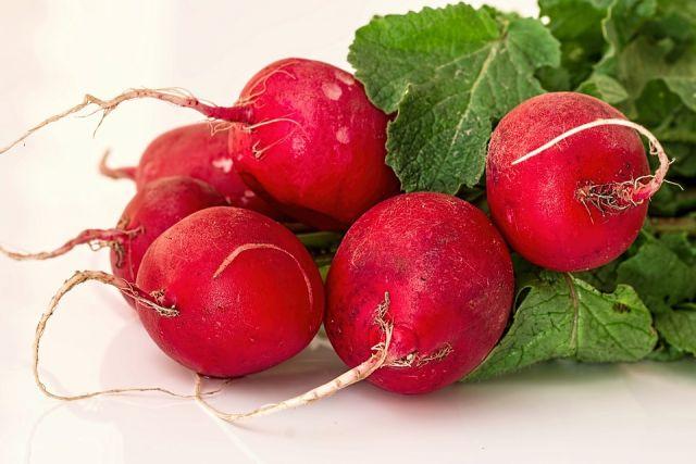 Редис - редкий овощ, который не заготавливают на зиму, а едят свежим всё лето, снимая по 2-3 урожая за сезон