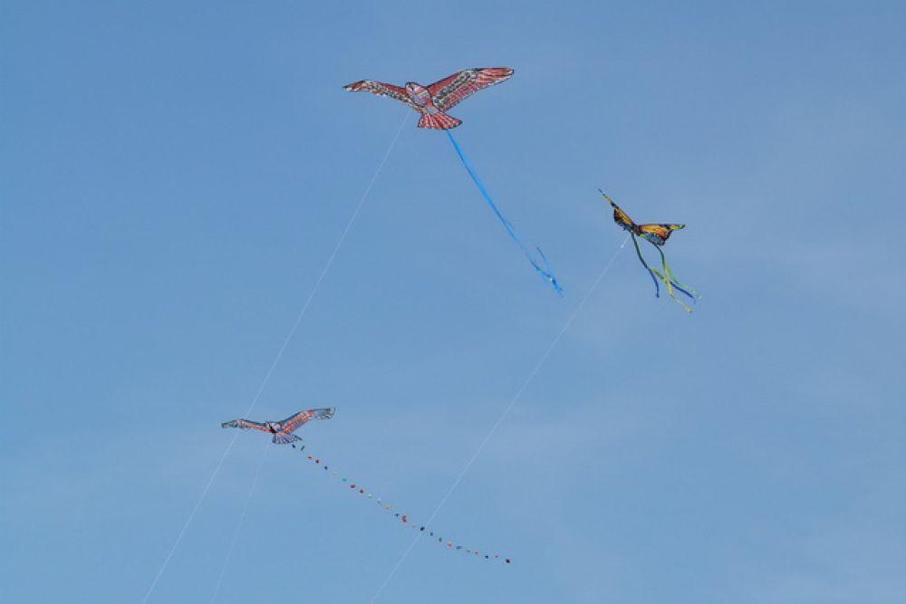 Фестиваль воздушных змеев.