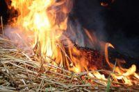 «Спички – не игрушка»: в Николаевской области дети спалили две тонны сена