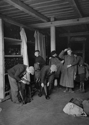 Новобранцы. Июнь 1941 года.