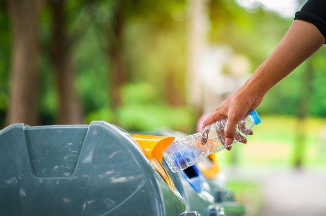 Снизят ли плату за мусор, если его будут сортировать?