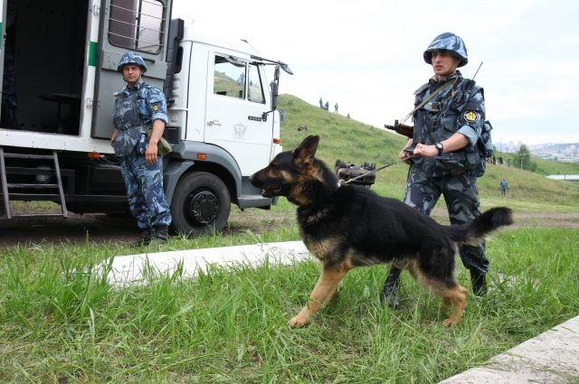 Каждый день с участием служебных собак где-то предотвращается преступление, спасается жизнь или находится пропавший человек.