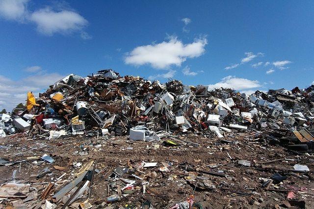 Только в Архангельске 19 нелегальных свалок, а легальные не справляются с тоннами завозимого мусора.