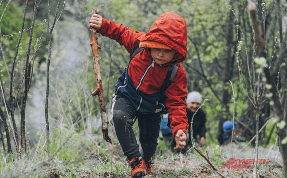 Палка — хороший помощник путешественника: это и опора, и защита, и, наконец, дрова для костра.