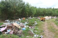 Пищевые отходы и мокрая бумага ущерба природе не нанесут.